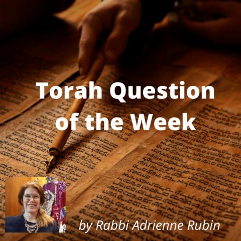 Rabbi Adrienne's Torah Question of the Week